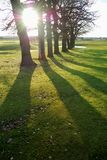 Long shadows. Landscape with long shadows taken in late afternoon Royalty Free Stock Photo
