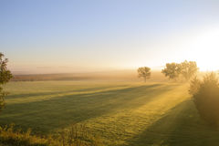 Long Shadows in Grassy Field Royalty Free Stock Photos