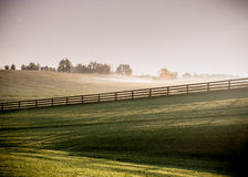 Long Shadows of Horse Fences in the Fog Royalty Free Stock Photo