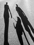 The long shadows of two people walking a dog. Staffordshire Bull Terrier. mobilestock Stock Photo