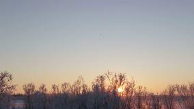 Long shot behind airport plane landing at sunset stock footage