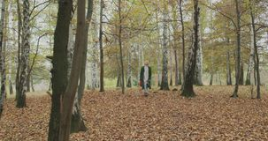 Long shot. Caucasian blond woman slomo walking through fall woods. Following in front gimbal. Storytelling real young stock video footage