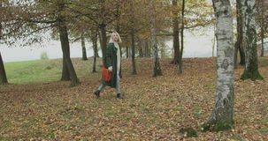 Long shot. Caucasian blond woman slomo walking through fall woods.Following side gimbal.Storytelling real young adult