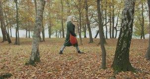 Long shot. Caucasian blond woman slomo walking through fall woods.Following side gimbal.Storytelling real young adult stock video