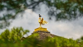 Crow on top of Golden pavilion temple cockerel. Long shot of crow on top of Golden pavilion temple cockerel behind the trees Royalty Free Stock Photo
