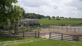 Long shot of a Farm. A long shot of a farm with green grass and trees Stock Photo