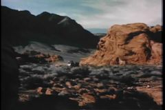 Long shot of horse carriage traveling across  Nevada valley stock footage
