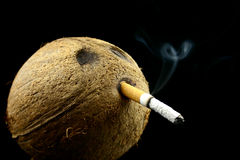 Long smoking. View at smoking addicted coconut head on a black background Royalty Free Stock Photography