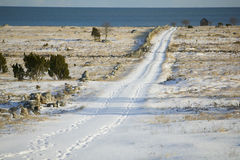 Long snow covered road.JH. Snow covred road down to the ocean on the island Gotland in the Baltic sea in Sweden royalty free stock photography