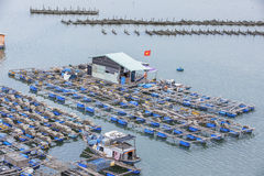 Long Son floating fishing village Royalty Free Stock Photography