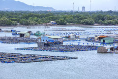 Long Son floating fishing village Stock Images