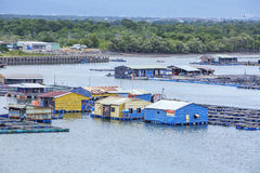 Long Son floating fishing village Royalty Free Stock Photo