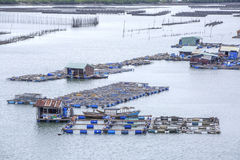 Long Son floating fishing village Royalty Free Stock Image