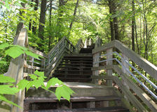 Free Long Stairway Up From Lake Michigan Royalty Free Stock Photography - 42255257