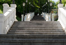 Long steep staircase in a wooded park Royalty Free Stock Photography