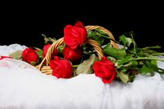 Long Stem Red Roses in Basket Royalty Free Stock Images