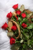 Long Stem Red Roses in Basket royalty free stock photo