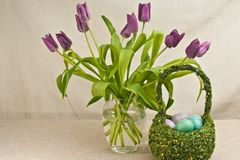 Long stemmed, purple, long stemmed tulips and  artisan, grass, easter basket, filler with colorful, easter eggs. Front  view, medium distance of long stemmed royalty free stock photo
