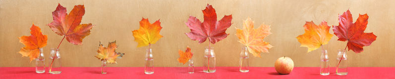 Long still life with colorful maple leaves and app Stock Photos