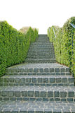 A long stone staircase isolated Stock Images