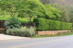 Long stone wall fence beside the road Stock Images