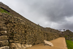 A long stone wall with Lama at the top Stock Photos