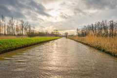 Long straight canal through a nature area in autumn. Almost endlessly looking long straight canal through a nature area in the autumn season. The reeds on the stock photos