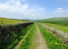 Long straight country lane with dry stone walls surrounded by green pasture with wildflowers in beautiful early summer sunlight. With blue sky and clouds with stock photo