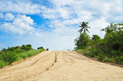 A long, straight dirt road disappears  landscape. Royalty Free Stock Photo