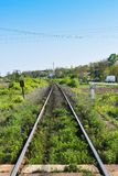 Long straight rails with vegetation stock images
