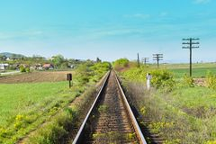 Long straight rails with vegetation. And green fields on a sunny summer day royalty free stock image
