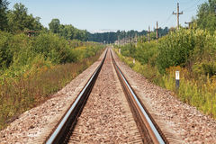 Long straight railway perspective with poles Royalty Free Stock Images