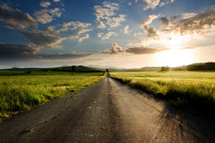 Long straight road. Middle of rural area Royalty Free Stock Image