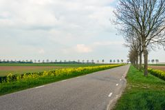 Long straight road through an agricultural landscape in the spri Royalty Free Stock Images