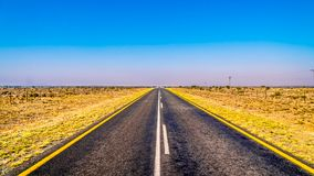Long Straight Road through the Endless wide open landscape of the semi desert Karoo Region in Free State and Eastern Cape province. S in South Africa under blue Stock Image