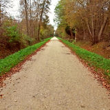 Long straight road path in forest Royalty Free Stock Photos