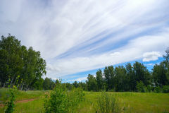 Long streaks of clouds in sky above the forest . Royalty Free Stock Photos