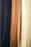 Long strengh hair. 3 tones, 3 colors Stock Image