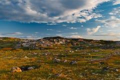 Long summer day behind a polar circle. Royalty Free Stock Photo