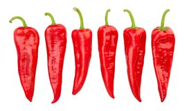 Long sweet peppers royalty free stock photo