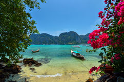 Long tail boats on Phi Phi island Stock Photo