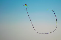 Long tail kite flying in blue sky Royalty Free Stock Photo