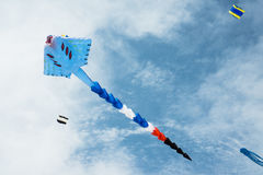 Long tail kite flying in cloudy sky Royalty Free Stock Image