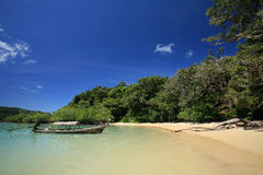 Long-tailed boat near beach and mangrove forest. Travel destination: long-tailed boat near tropical beach and mangrove forest at Surin islands national park Stock Photos
