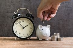 Long term financial saving and investment account, hand putting. Coin into piggy bank with stack of coins beside and alarm clock on wood table with dark black royalty free stock photo
