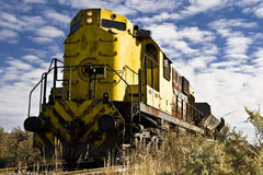 Long train passing in Patagonia Royalty Free Stock Photos
