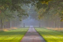 Long tree lane Royalty Free Stock Images
