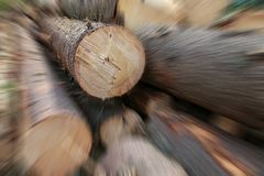 Long trunks of pine trees sawn wood stack speed blur focus on the top row blur motion royalty free stock image