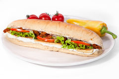 Long vegan sandwich Stock Images
