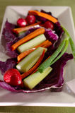 Long Vegetable Plate Royalty Free Stock Image